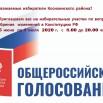 golosovanie-konstitutsiya.jpg
